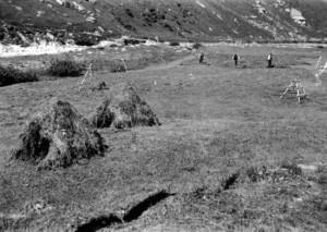 Heinzen, Zerfreila, 1934